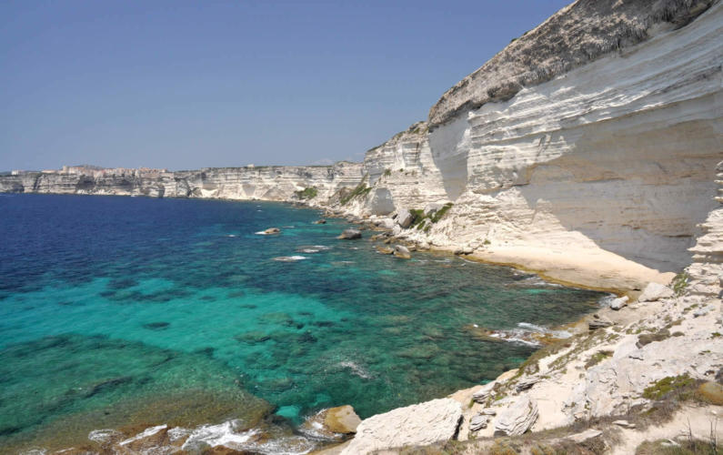 BARNES Corsica