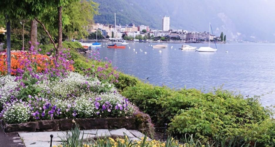 Appartement A Louer Montreux