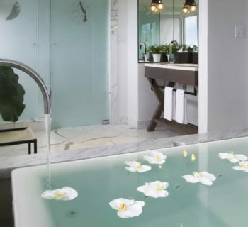 hotel-victor-evian-bath-most-expensive-world