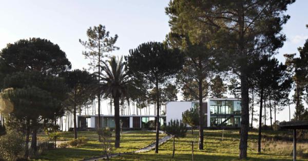 superbe-maison-moderne-4-suites-vendre-comporta
