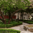 the-nuns-garden-secret-spot-heart-convent-sacramento