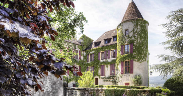 renovated-13th-century-chateau-6-spacious-apartments-vaulted-cellar-for-sale-bavois