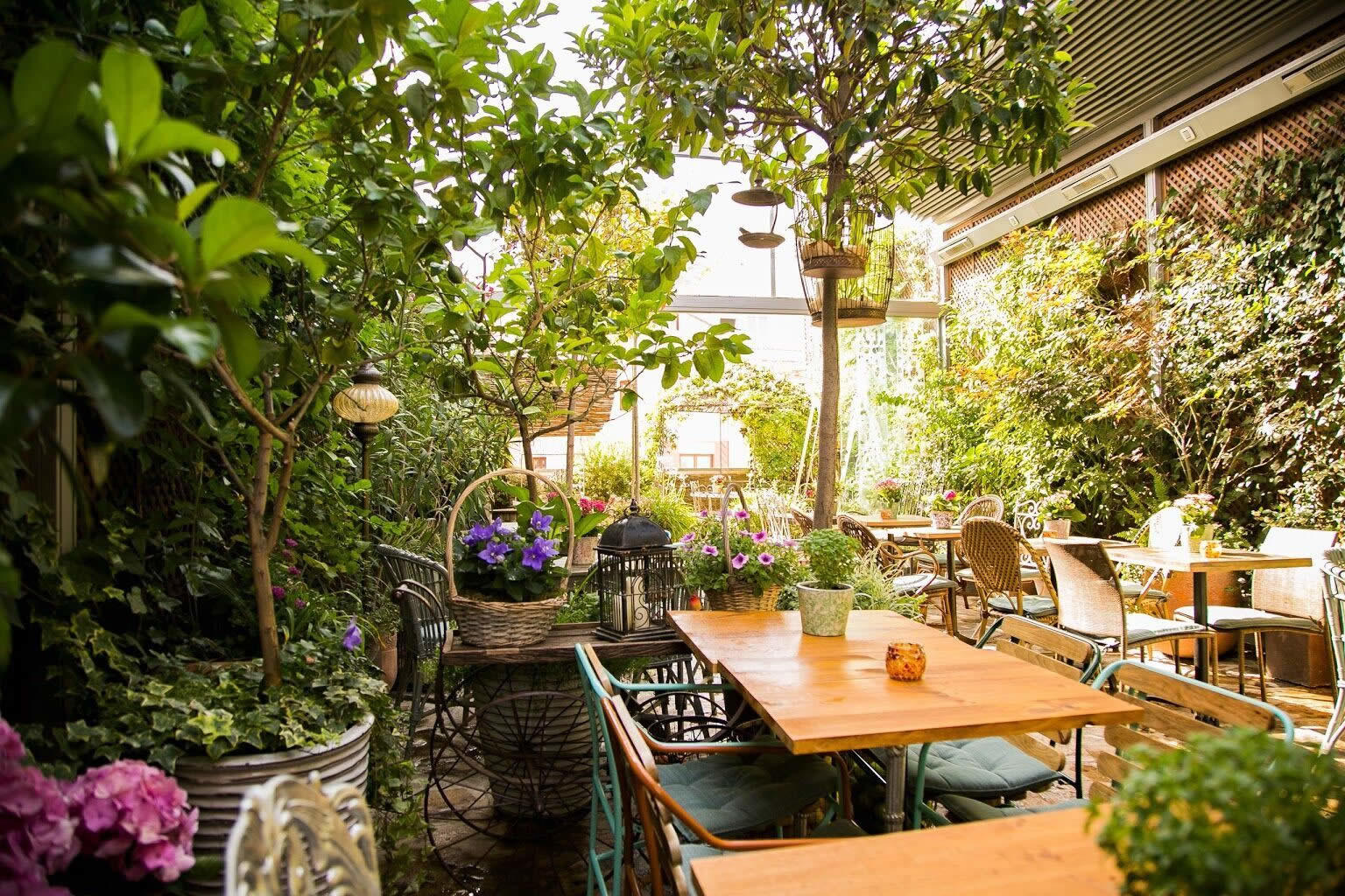 El jardin secreto de salvador bachiller a secret address for Cafe el jardin secreto