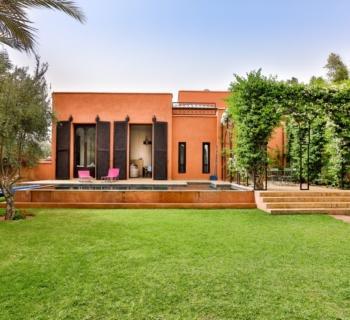 riad-piscine-a-vendre-cheminee-terrasse-patio