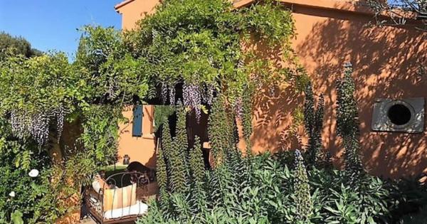 provencal-farmhouse-landscaped-lawn-for-sale-sanary-sur-mer-annex-fireplace-pool-patio-terraces
