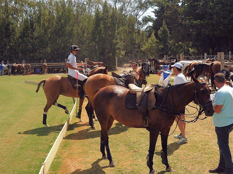 santa-maria-polo-club-institution-incontournable