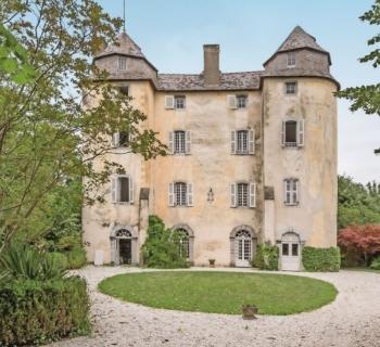 grand-chateau-historique-7-hectares-a-vendre-horgues-hautes-pyrenees-parquets-cheminees-moulures-piscine