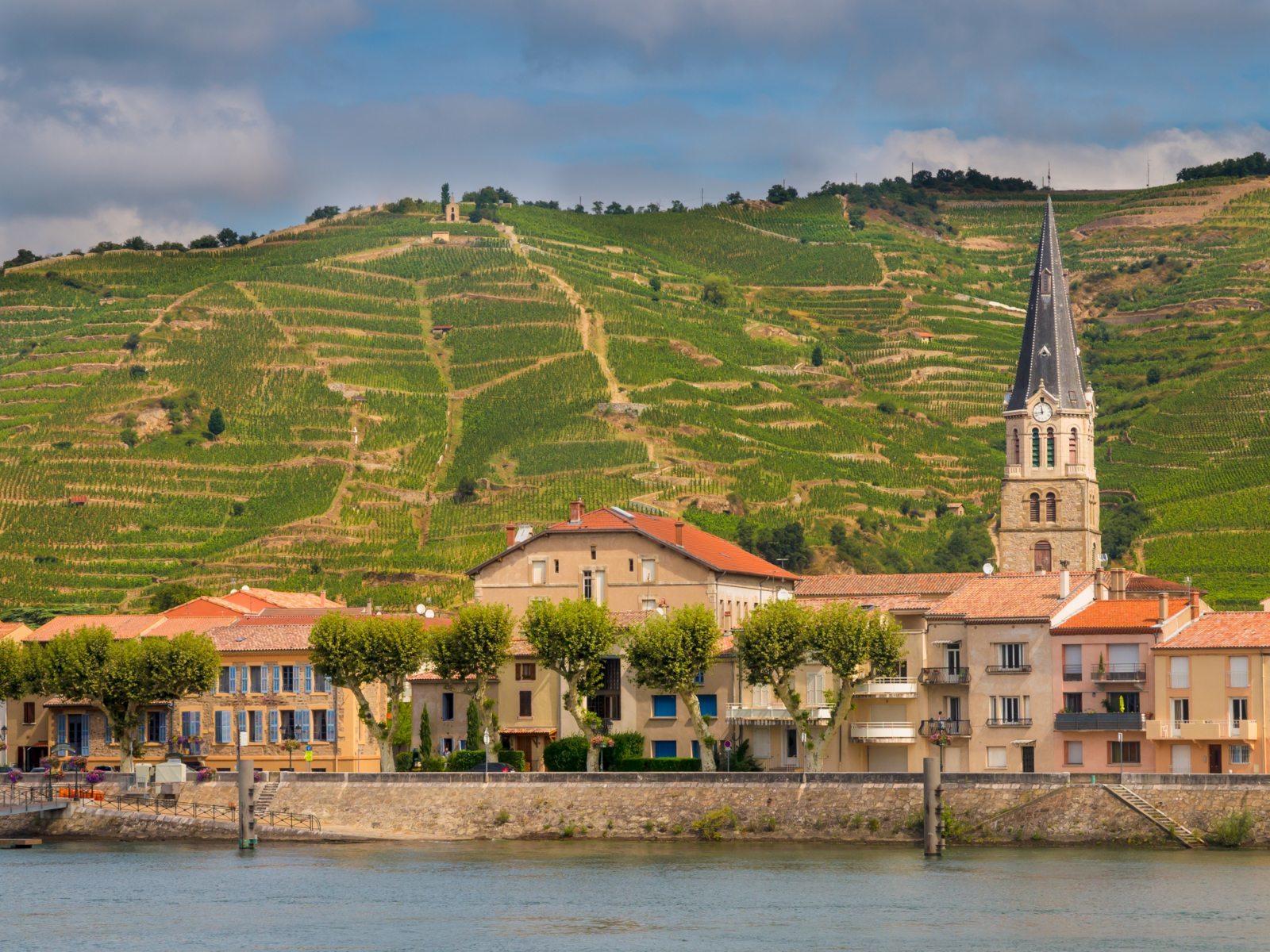 decouvrir-regions-provence-avignon-alpilles-luberon-camargue-vallee-du-rhone
