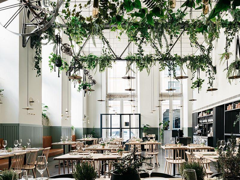 restaurant-prado-ambiance-joyeuse-conviviale-produits-frais-terroir-cuvees-biodynamique
