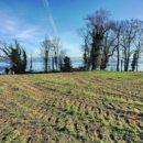 rare-building-plot-for-sale-shores-lac-geneva-dully-stunning-view-alps