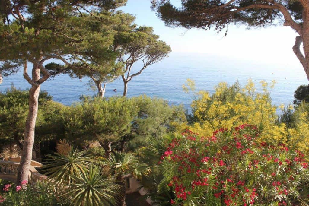villa-exceptionnelle-panorama-a-vendre-carry-le-rouet-cheminee-terrasses-piscine