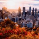 montreal-quebec-destination-essor-2019-barnes-immobilier-luxe