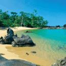 ile-maurice-destination-essor-2019-barnes-immobilier-luxe