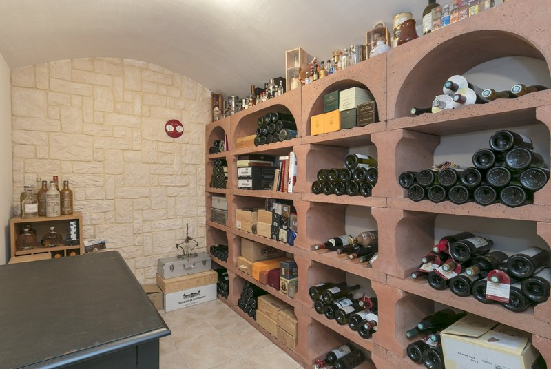 large-contemporary-house-for-sale-private-domain-buc-view-forest-versailles-wine-cellar-laundry-garage